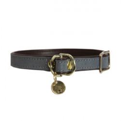 1 Collier pour chien Loop Gris Kentucky,Kentucky,Santé chat et chien