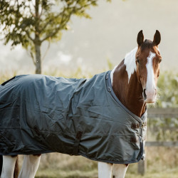 2 Couverture Turnout Rug All Weather 160gr Kentucky,Couverture hiver cheval