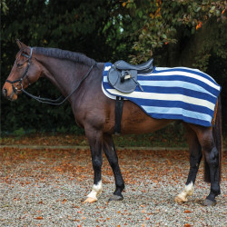 Couvre reins cheval Rambo Newmarket Competition rayure bleu
