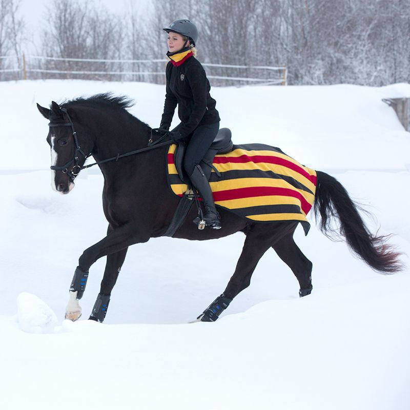 Couvre reins cheval Rambo Newmarket Competition rayure jaune rouge noir