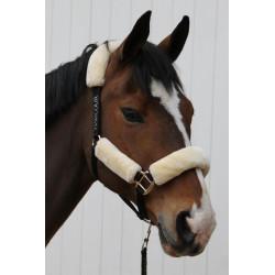 Ensemble Harcour licol mouton synthétique et sa longe pour le confort de votre cheval  - Le Paturon