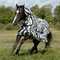 Couverture anti-dermite cheval Sweet Itch Zebra Bucas - Le Paturon