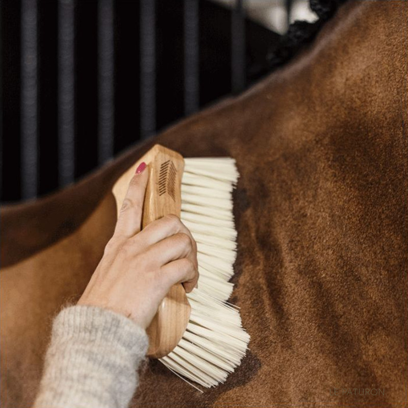 Grooming Deluxe Kentucky - Brosse douce cheval - Le Paturon Pansage cheval