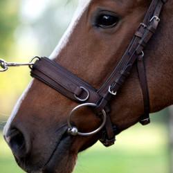 Caveçon cheval en cuir Anatomic - Le Paturon
