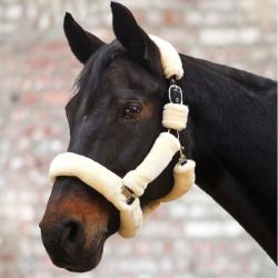 Licol nylon cheval en...