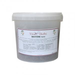 Biotine Cheval Forte Granulés Vital Herbs