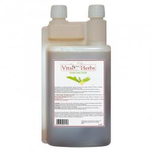 Kush Less Forte Liquide Endocrinien Cheval