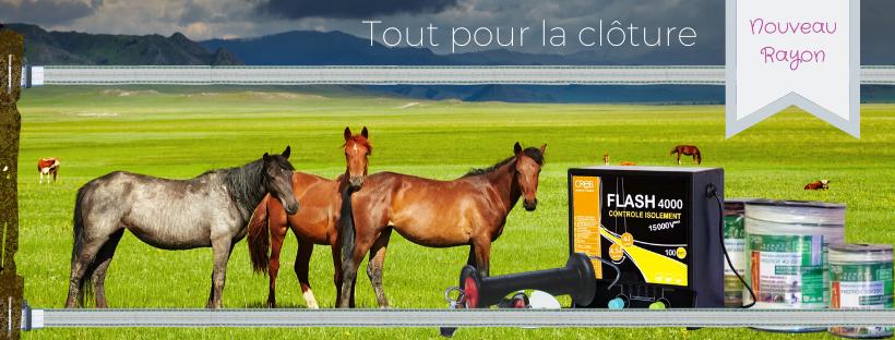 Clôture électrique chevaux - Le Paturon
