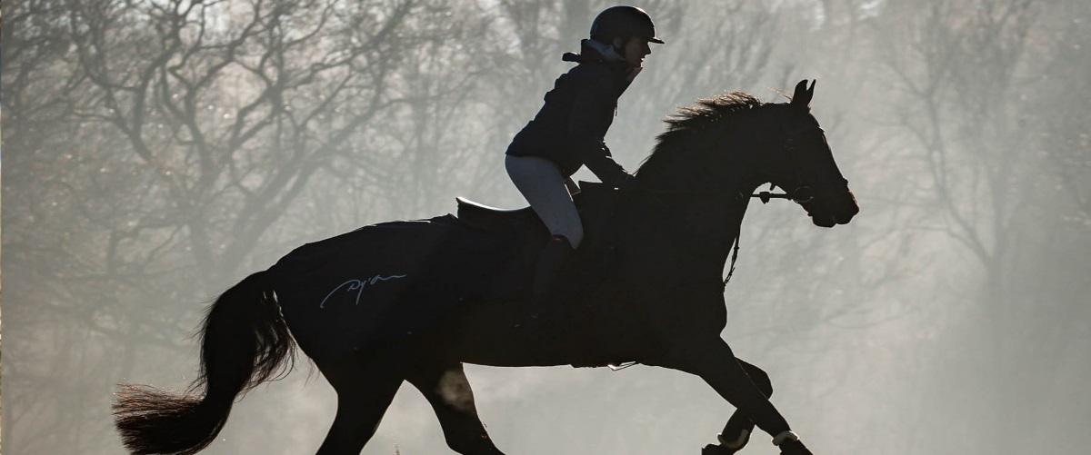 Couverture cheval Dy'on - Le Paturon