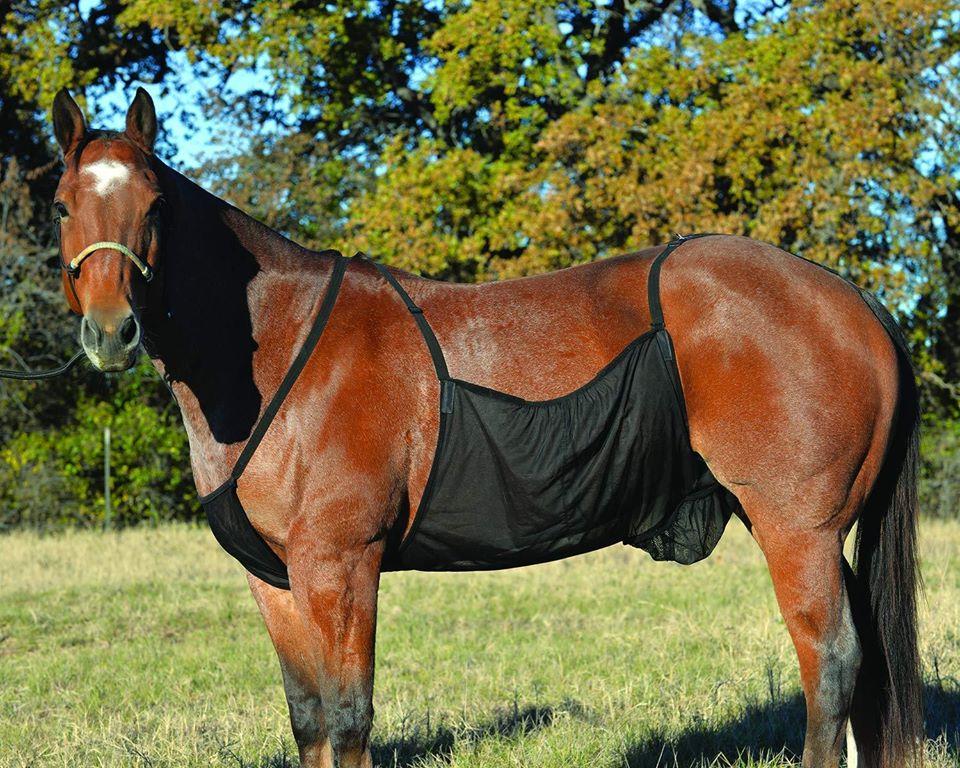 Protection démangeaison cheval - Le Paturon