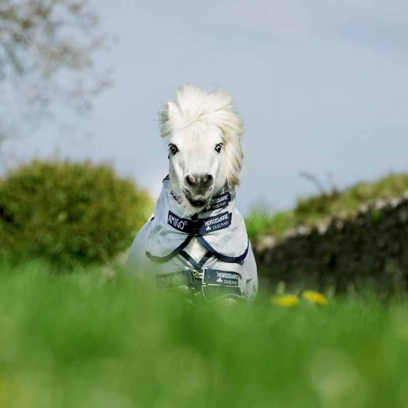 Couverture cheval mini Shetland Horseware Bug Rug - Le Paturon