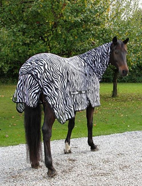 Couverture anti-mouche cheval avec couvre-cou Zebra - Stabble Pro