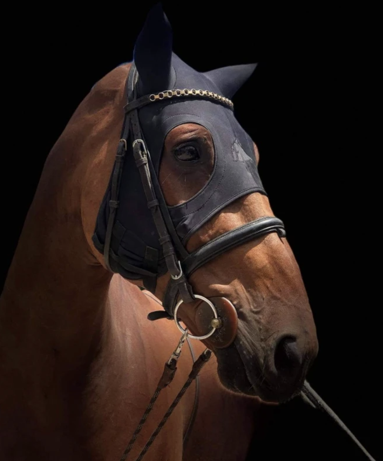 masque mouche cheval Fenwick Titane liquid - anti stress cheval - Le Paturon