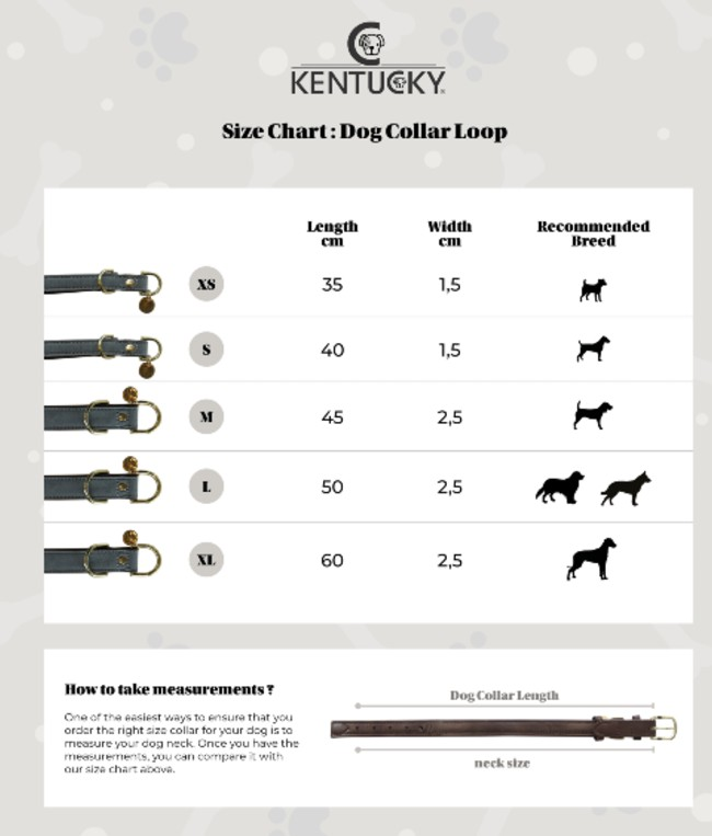 Loop collier chien - Kentucky - Le Paturon
