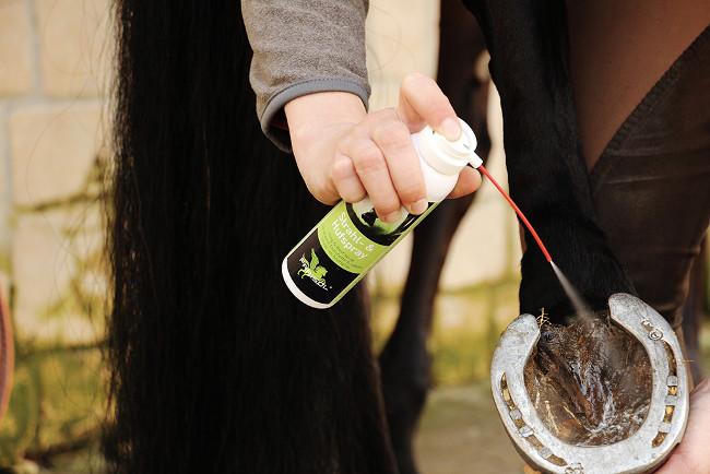 Spray fourchette cheval - Parisol - Le Paturon