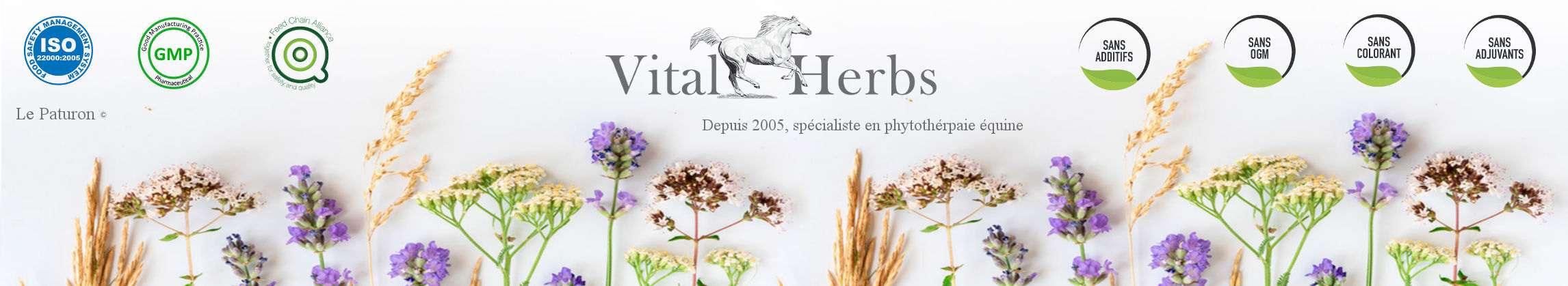 Vital Herbs - Phytothérapie équine - Produit naturel cheval - Le Paturon