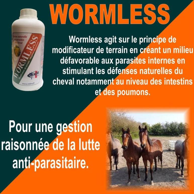 Wormless Rekor