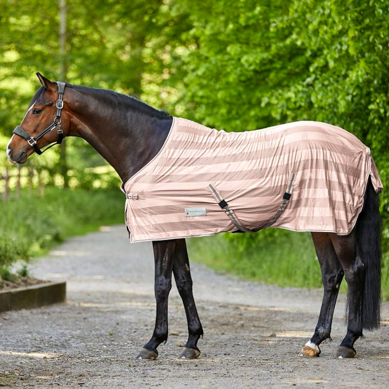 Couverture cheval rose Economic Waldhausen - Le Paturon