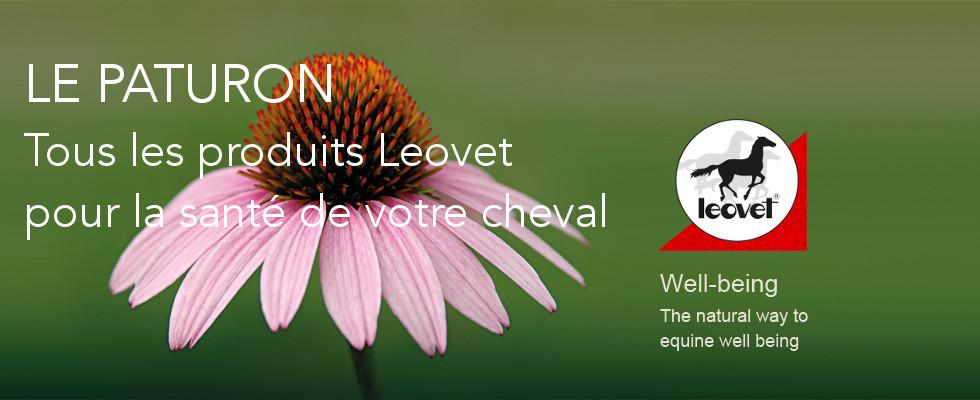 Leovet santé cheval - Le Paturon