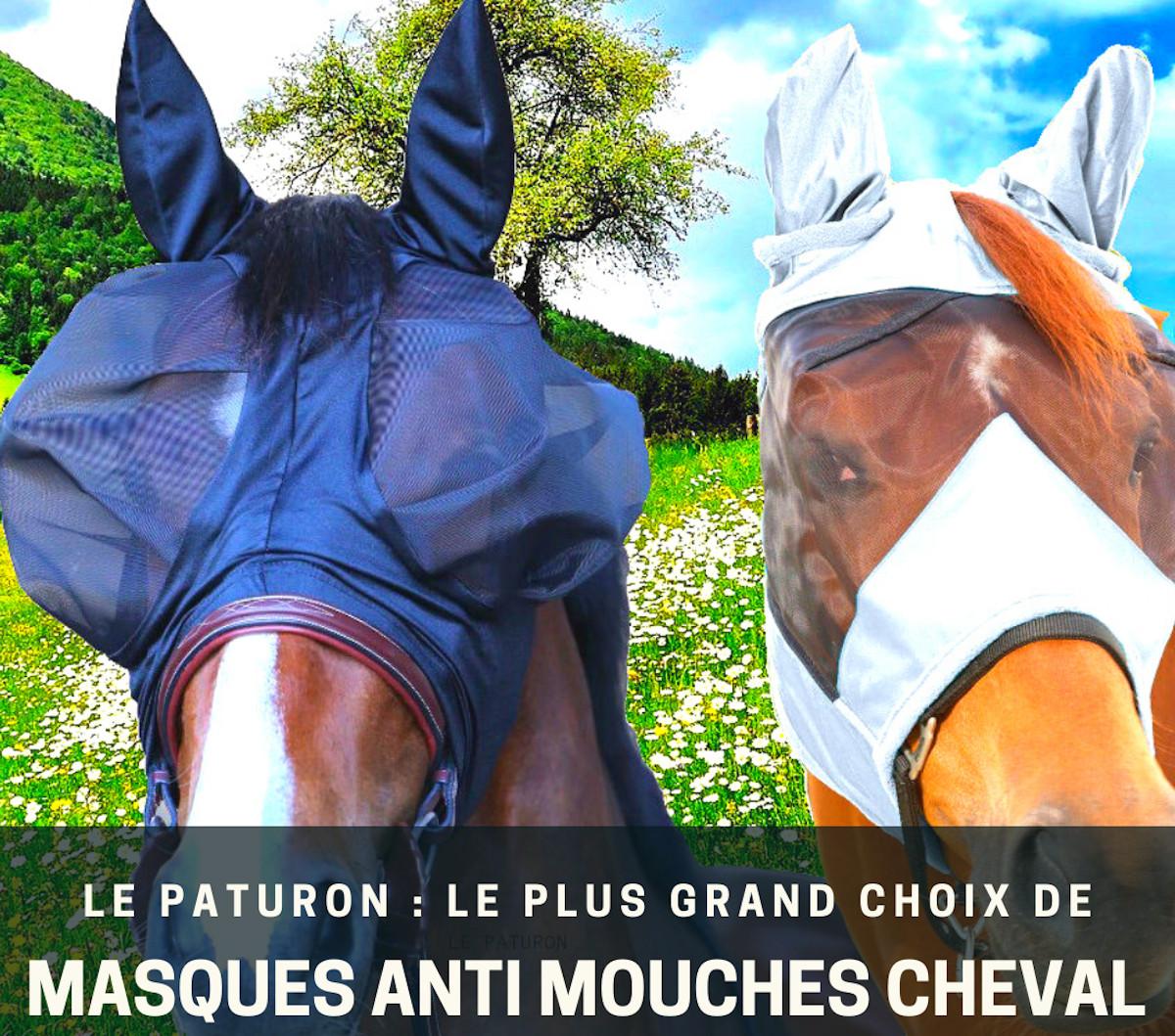 Meilleur masque anti mouche cheval - Le Paturon