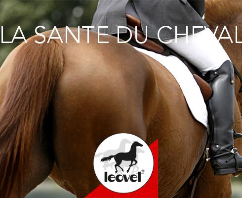 Leovet Santé du cheval - Le Paturon