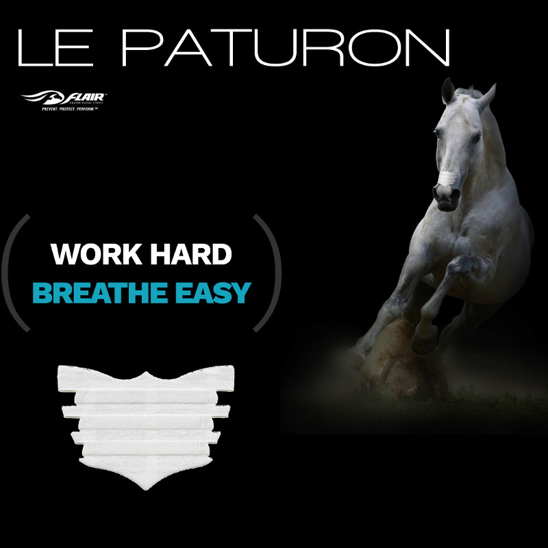 Flair Strips cheval - Le Paturon