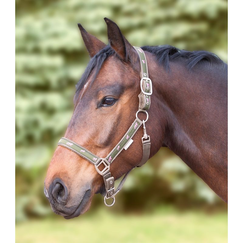 Licol nylon, petite tête de cheval, Licol Waldhausen - Le Paturon