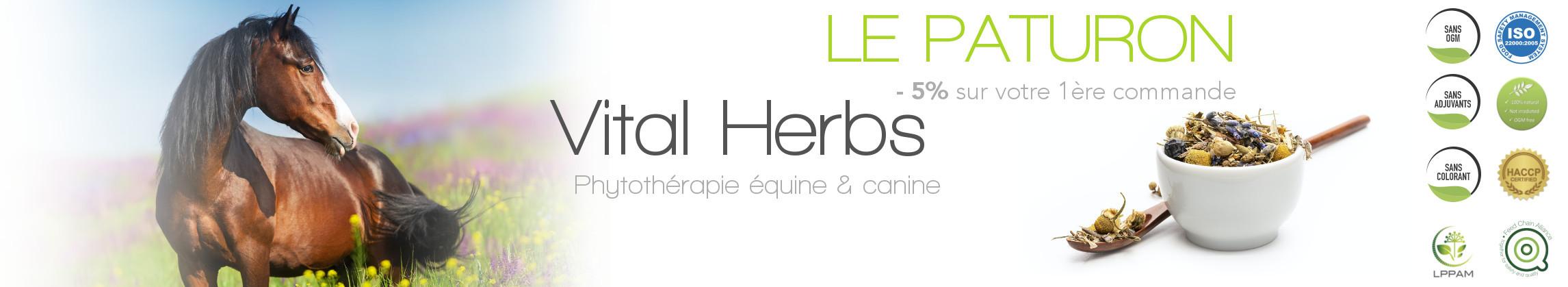 Vital Herbs - Phytothérapie cheval - Le Paturon